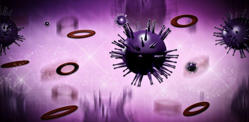 Weitere Viren im Liebesleben